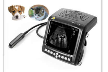 Ultrasound scan for small animals