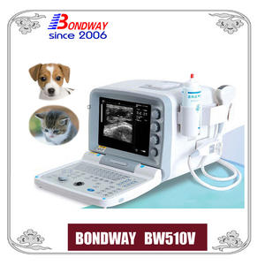 Vet ultrasound scanner for small animals, cat, dog, rabbit, canine, feline