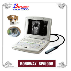Digital LAPTOP Ultrasound Scan para animales pequeños