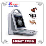 Digital Veterinary Ultrasound Scanner