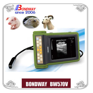 Vet Ultrasound, ультразвук для свиней, овец, коз, альпакка, Easiscan, репроцан