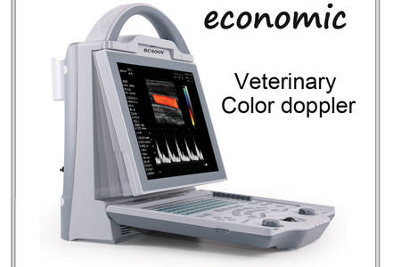 Veterinary color doppler