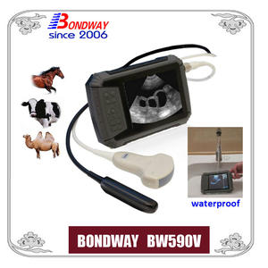 Veterinary ultrasound scan for equine,bovine, cattle, llama, vet ultrasound