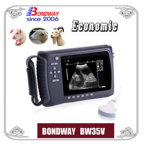 Veterinary ultrasound scan for swine, ovine, goat,alpacca, vet ultrasound
