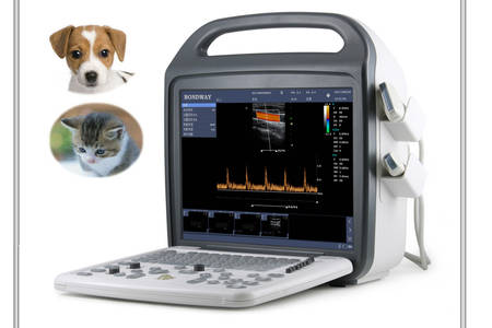 Doppler color veterinario