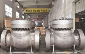 Swing Check Valve manufacturer,DIN Swing check valve supplier in China