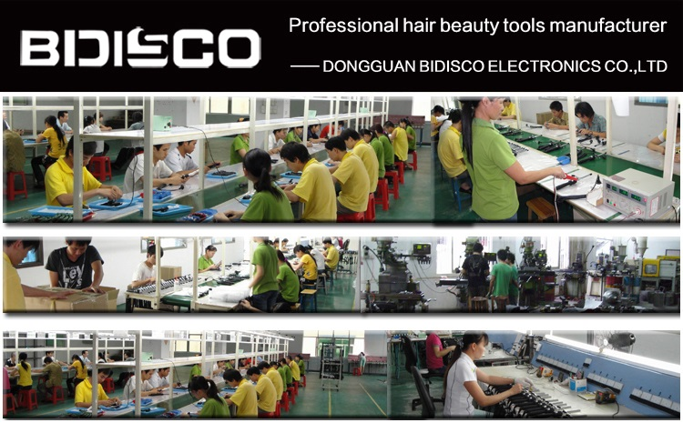 titanium hair straightener,professional Japanese led display anion wholesale factory hairstyle flat iron
