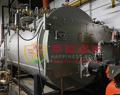 WNS series Gas fired boilers