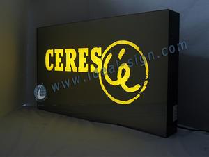Indoor Segni di luce a LED per la pubblicità display