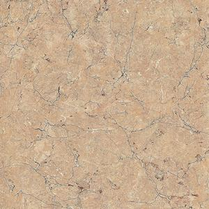 Fossil  gray porcelain tile
