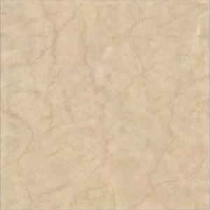 Construction porcelain tiles W6S6073