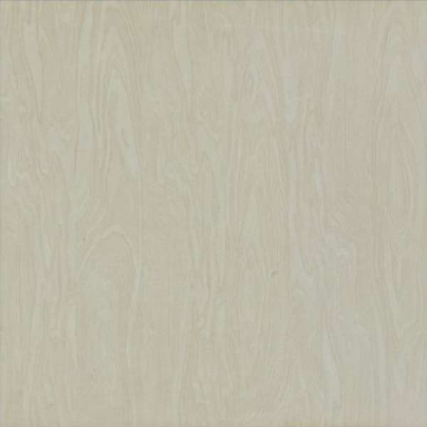 Ceramic unglazed floor tile W6S999