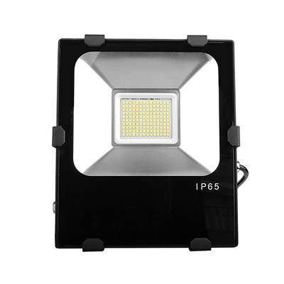 50W Cast Light