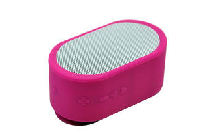 IPX4 Waterproof  Wireless Speaker Mini Handsfree Bluetooth Shower Speaker With FM Radio