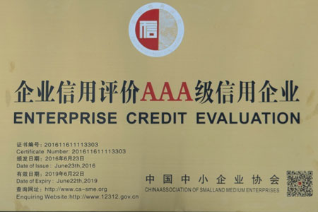 Enterprise Credit Evaluation Grade AAA