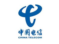 China Telecom partner