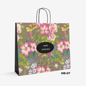 shopping kraft bag HD-7