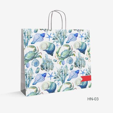Printed Kraft bag HN-3