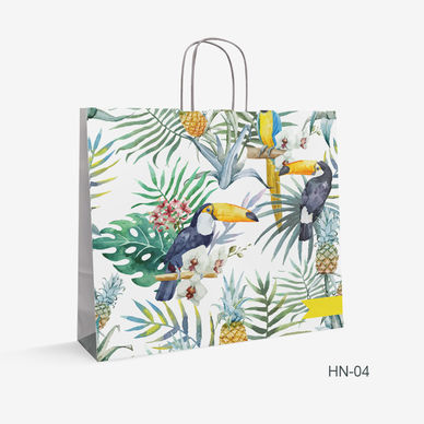Printed Kraft bag birds HN-4