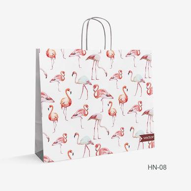 Printed Kraft bag Turkey HN-8