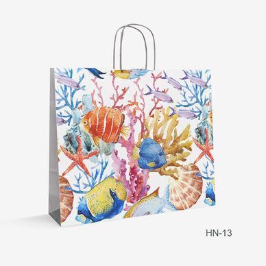 Printed Kraft bag fish HN-13