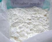 Raw Steroid Powder Oral Turinabol / 4-Chlordehydromethyltestosterone CAS 2446-23-2