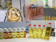 Oral o Inyectable Ganancia de Esteroides Anabólicos Androlina Propionato de Testosterona