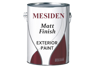 Exterior Emulsion Wall Paint - E2