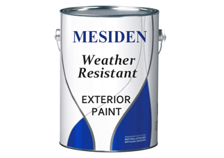 Exterior Emulsion Wall Paint - E1