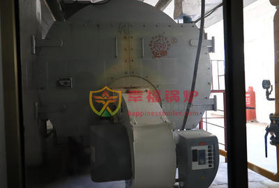 Rubber industry 10 tons WNS series condensing gas steam boiler