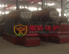 DZL series biomass fired boiler hot water boiler