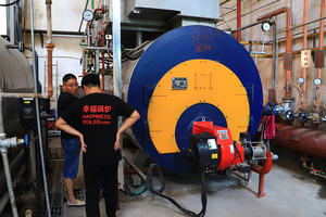 China automatic water boiler manufacturers