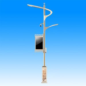 smart street light pole | Real Faith Lighting | Lighting Solution Expert