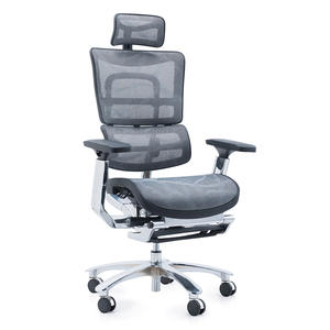 Ergohuman chair with footrest
