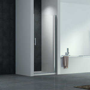 F113 Single Piovt Swing Shower Door with raise and fall