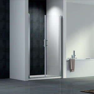 F124 Double Swing Pivot Shower Door