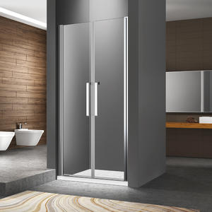 Saloon Shower Door FC124