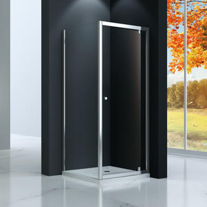 TP523 Single Piovt Swinging Shower Doors | Welleader
