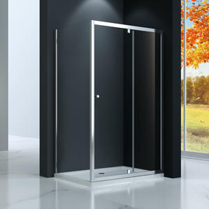 TP533 Pivot Swing Shower Door