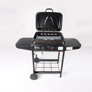 GY01 Gas Charcoal Grill