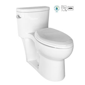 OEM One Piece Elongated Toilet Factory