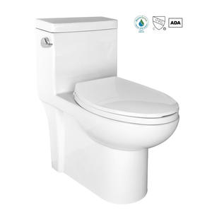 Elongated One Piece Bathroom Toilet