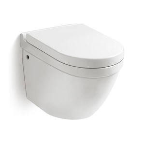Wholesale Wall Mounted Toilet Bowl Factory