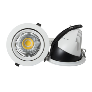 Gimbal LED Down Light