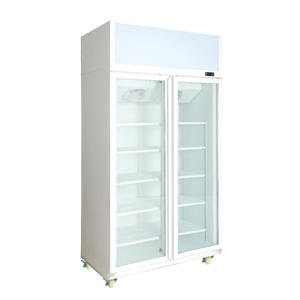 Double Door Compressor Stand Up Beer Cooler