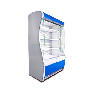High Quality Vegetable Chiller Refrigerator with ISO certified