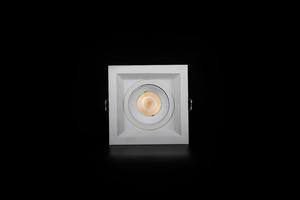 best customized LED Downlight  manufacturing