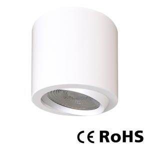 TDL-10 - Surface Mounted Downlight
