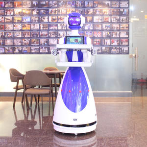 professional high quality assistant robot LeLe supplier manufacturer