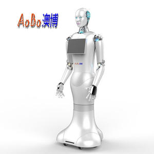 The Robot Xiaoao